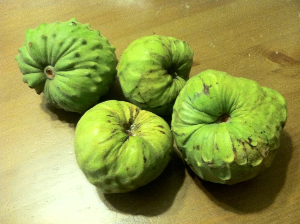 I ripe cherimoya